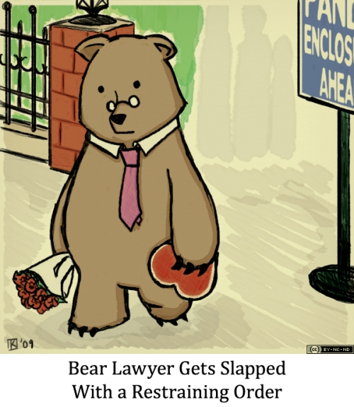 Bear Lawyer Gets Slapped With a Restraining Order