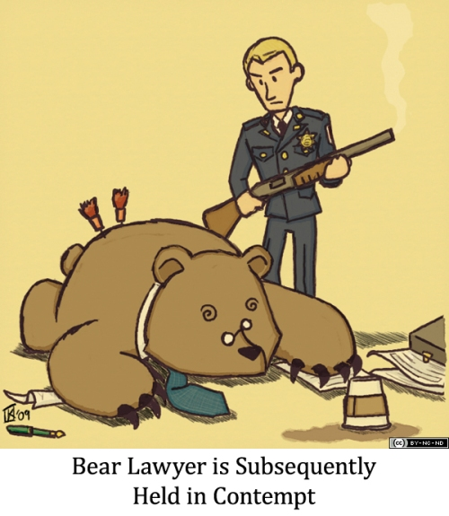 Bear Lawyer is Subsequently Held in Contempt