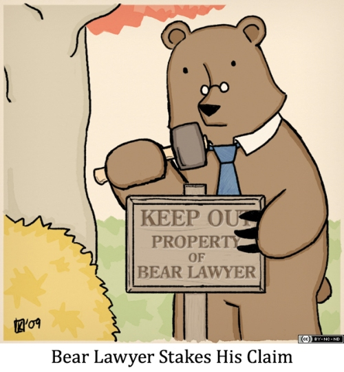 Bear Lawyer Stakes His Claim