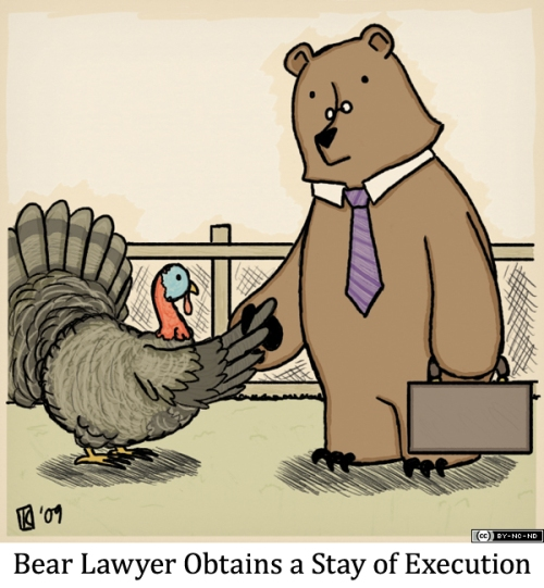 Bear Lawyer Obtains a Stay of Execution