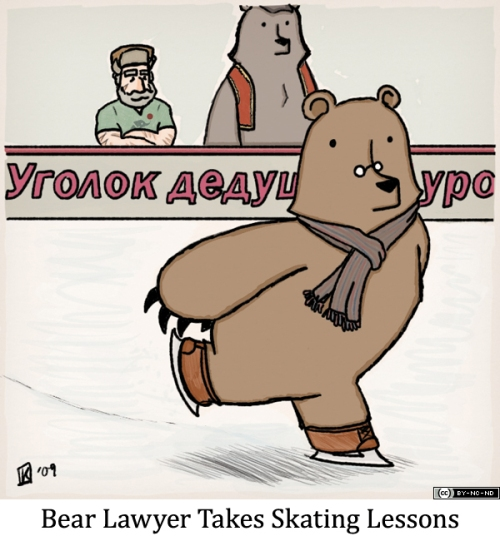 Bear Lawyer Takes Skating Lessons