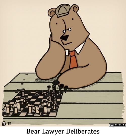 Bear Lawyer Deliberates