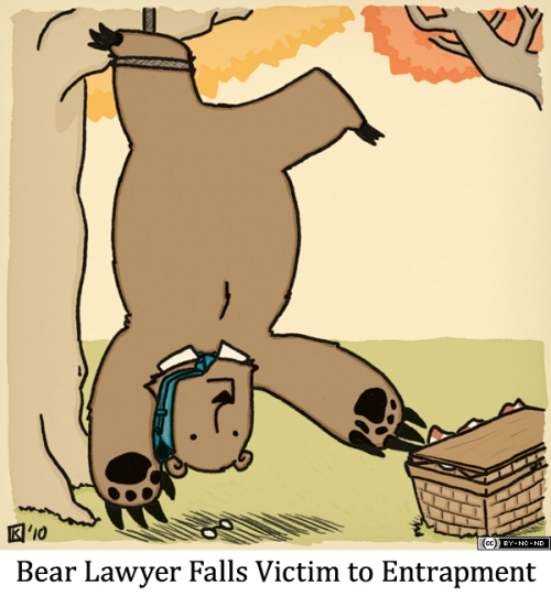Bear Lawyer Falls Victim to Entrapment