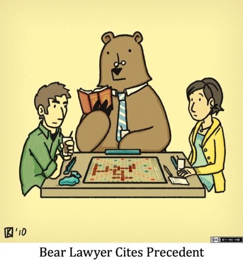 Bear Lawyer Cites Precedent