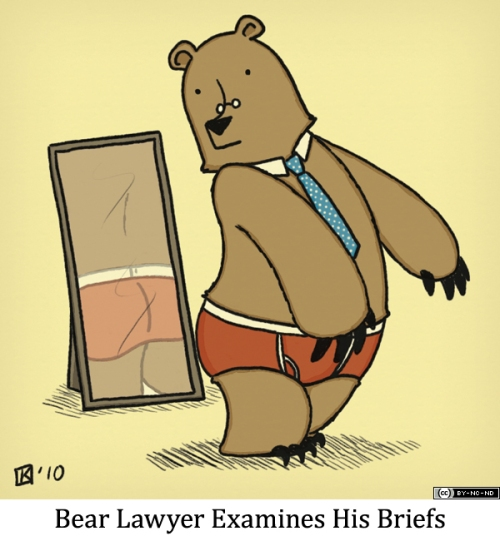 Bear Lawyer Examines His Briefs