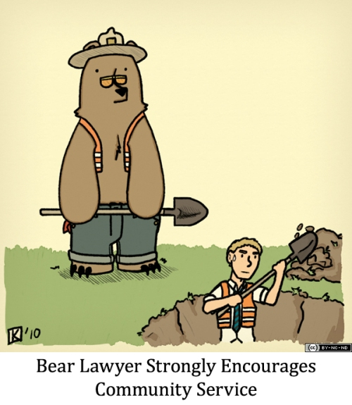 Bear Lawyer Strongly Encourages Community Service