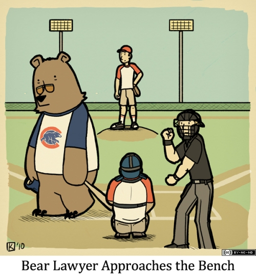 Bear Lawyer Approaches the Bench