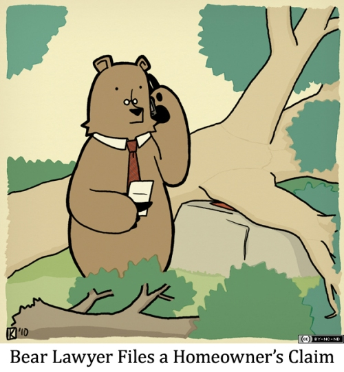 Bear Lawyer Files a Homeowner's Claim