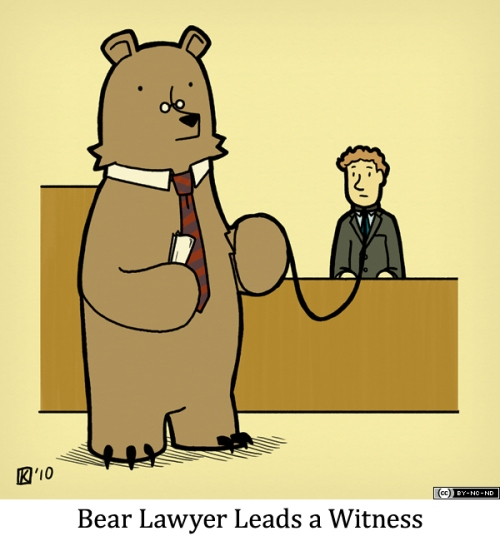 Bear Lawyer Leads a Witness