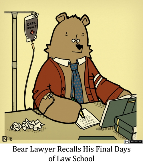 Bear Lawyer Recalls His Final Days of Law School