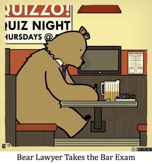 Bear Lawyer Takes the Bar Exam