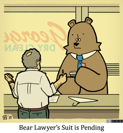 Bear Lawyer's Suit is Pending