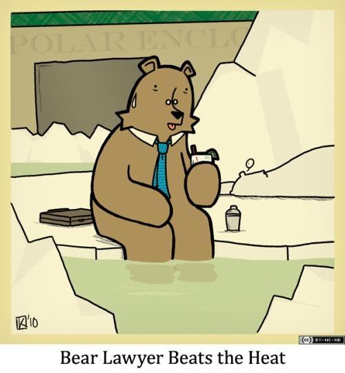 Bear Lawyer Beats the Heat