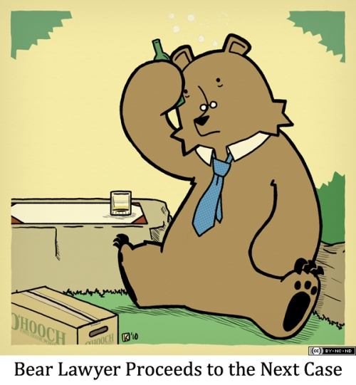 Bear Lawyer Proceeds to the Next Case