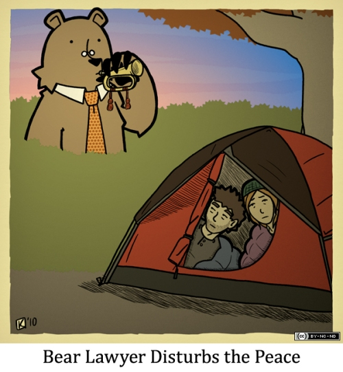 Bear Lawyer Disturbs the Peace