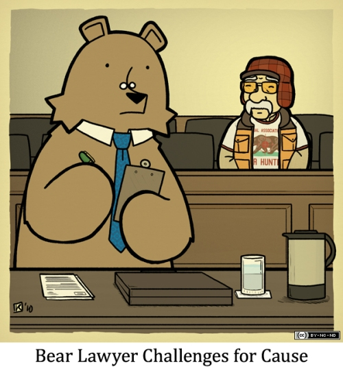 Bear Lawyer Challenges for Cause