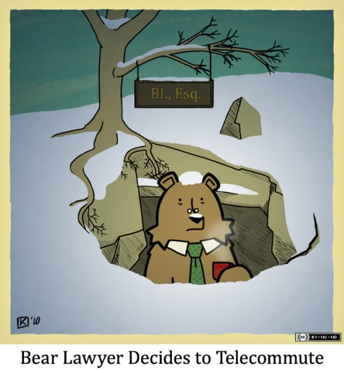 Bear Lawyer Decides to Telecommute