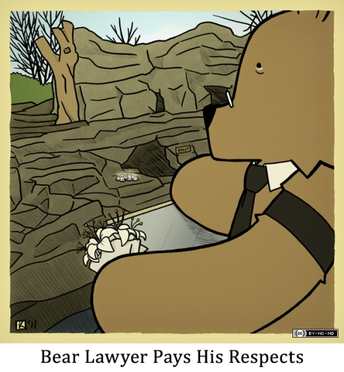 Bear Lawyer Pays His Respects