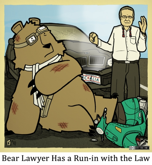 Bear Lawyer Has a Run-in with the Law