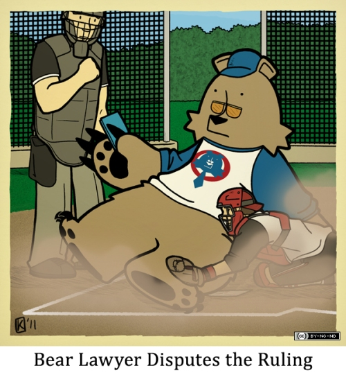Bear Lawyer Disputes the Ruling