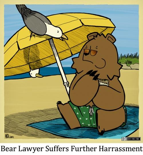 Bear Lawyer Suffers Further Harrassment