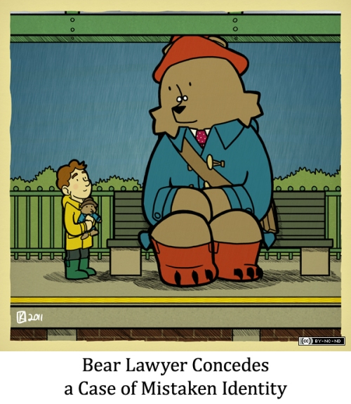 Bear Lawyer Concedes a Case of Mistaken Identity