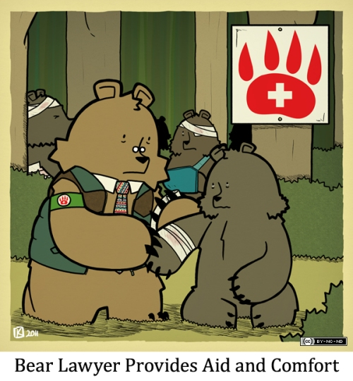 Bear Lawyer Provides Aid and Comfort