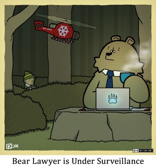 Bear Lawyer is Under Surveillance