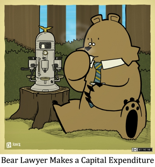 Bear Lawyer Makes a Capital Expenditure