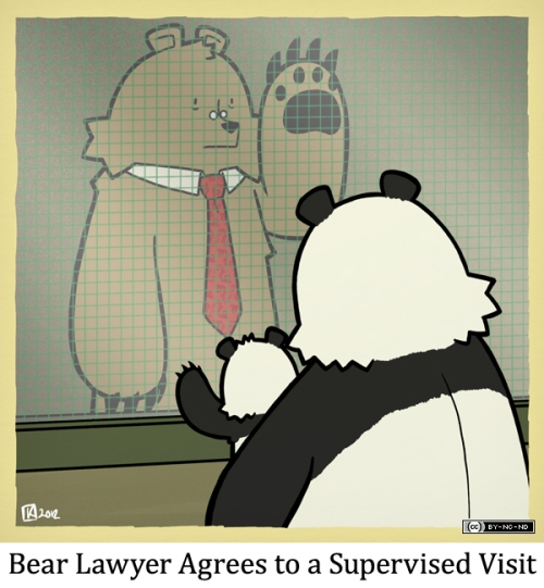 Bear Lawyer Agrees to a Supervised Visit