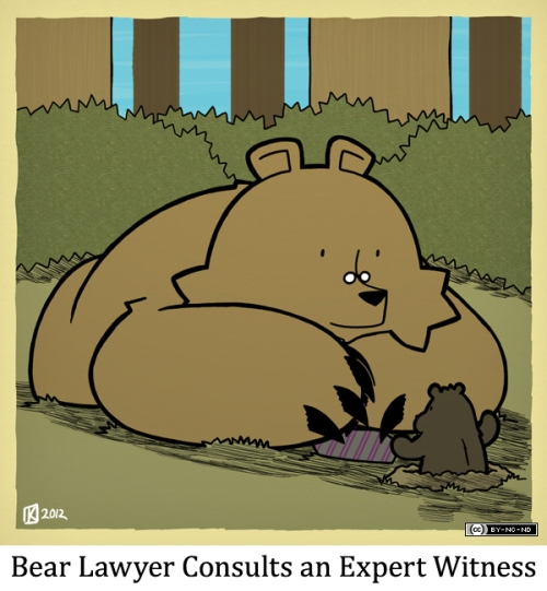 Bear Lawyer Consults an Expert Witness