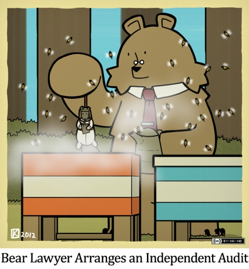 Bear Lawyer Arranges an Independent Audit