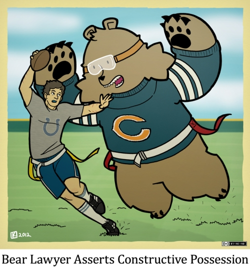 Bear Lawyer Asserts Constructive Possession