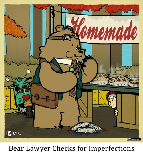 Bear Lawyer Checks for Imperfections
