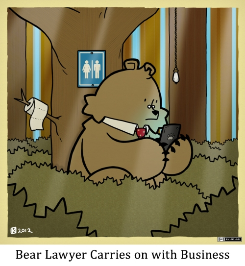 Bear Lawyer Carries on with Business