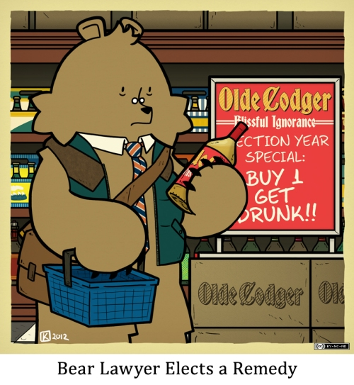 Bear Lawyer Elects a Remedy
