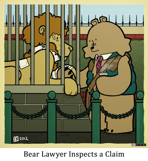 Bear Lawyer Inspects a Claim