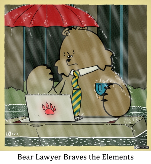 Bear Lawyer Braves the Elements