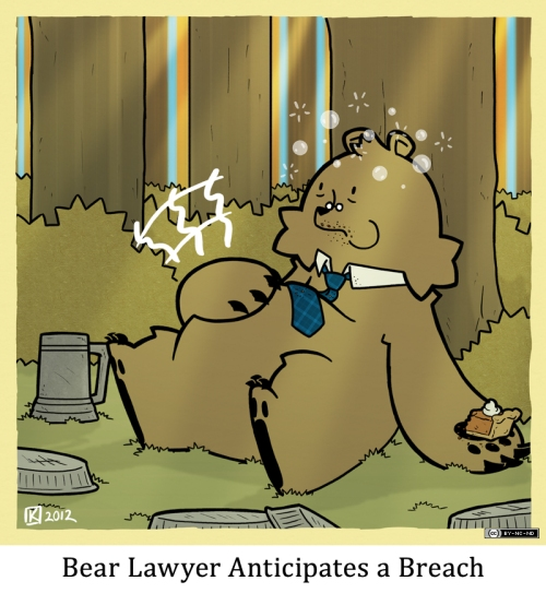 Bear Lawyer Anticipates a Breach