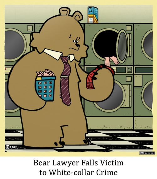 Bear Lawyer Falls Victim to White-collar Crime