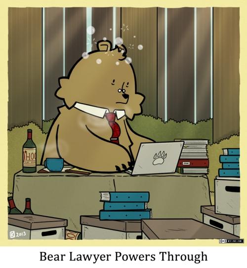 Bear Lawyer Powers Through
