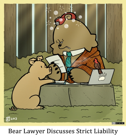 Bear Lawyer Discusses Strict Liability