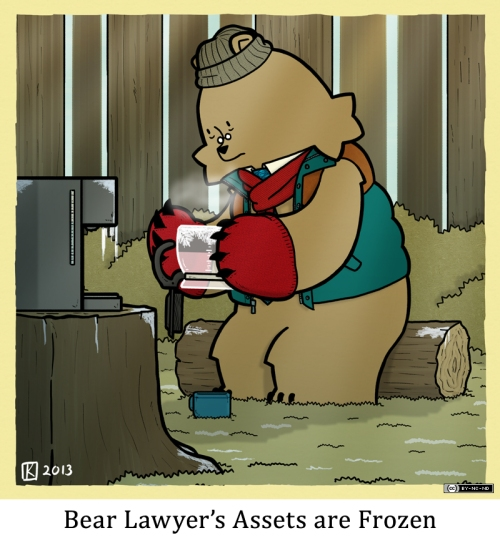 Bear Lawyer's Assets are Frozen