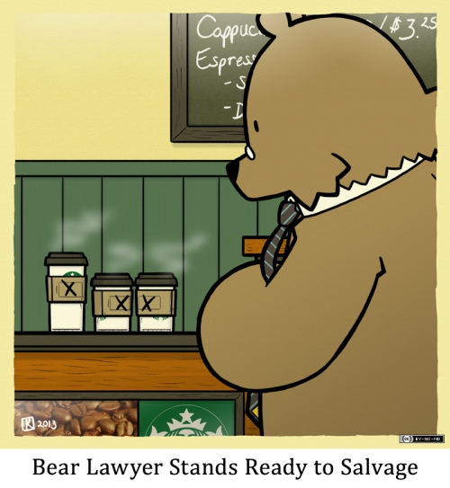 Bear Lawyer Stands Ready to Salvage