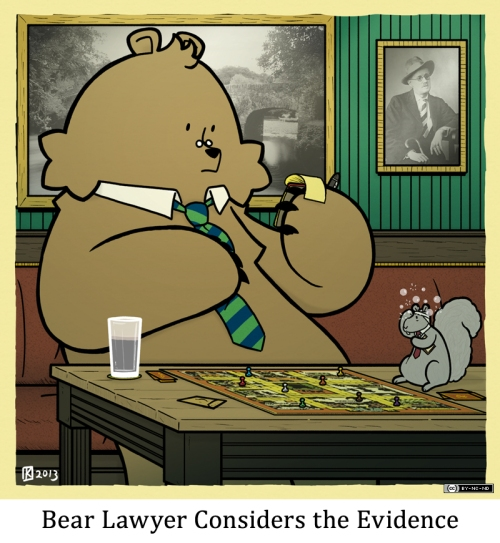 Bear Lawyer Considers the Evidence