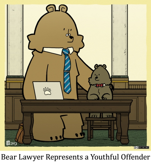 Bear Lawyer Represents a Youthful Offender