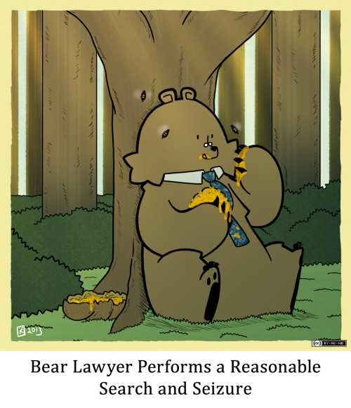 Bear Lawyer Performs a Reasonable Search and Seizure