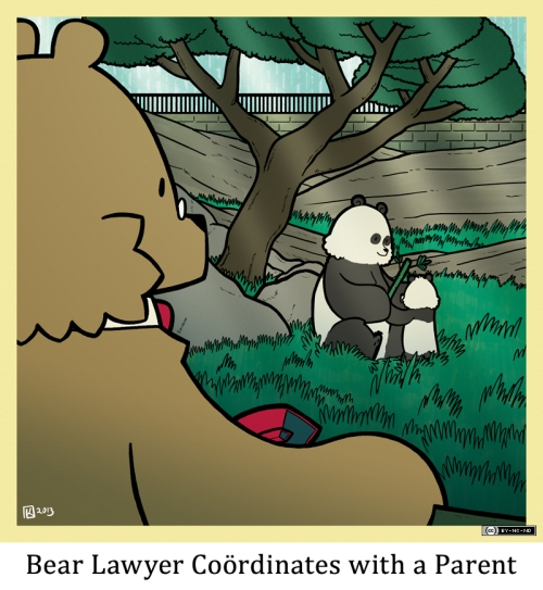 Bear Lawyer Coördinates with a Parent