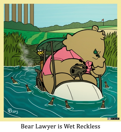 Bear Lawyer is Wet Reckless