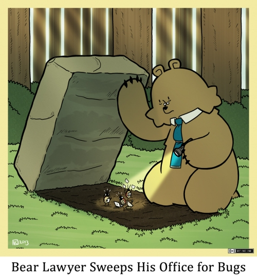 Bear Lawyer Sweeps His Office for Bugs